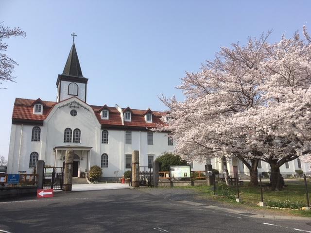 多治見市 修道院の桜 2018